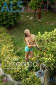 Cayenne Nude in Sheared